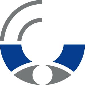 Bisv Logo