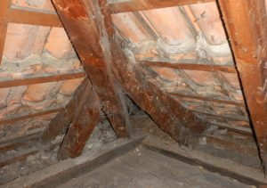 Dachstuhl Einfamilienhaus Insektenbekaempfung